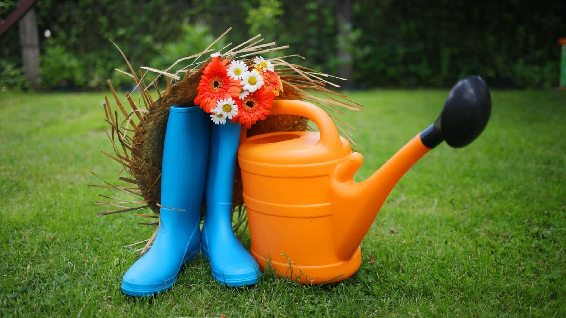 Les outils indispensables à un bon jardin